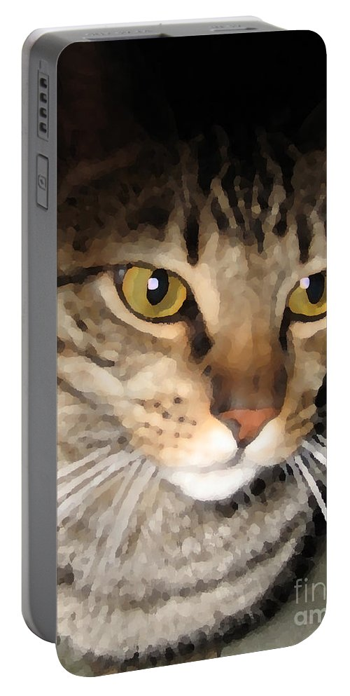 Cat Portable Battery Charger featuring the photograph Wise Cat by Rhonda Chase