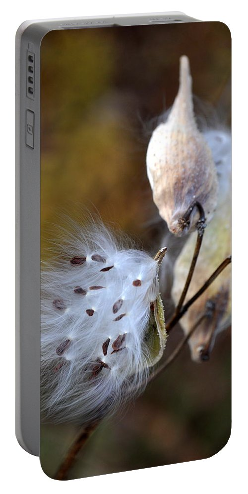 Flower Portable Battery Charger featuring the photograph Wish You Were Here by Trish Tritz