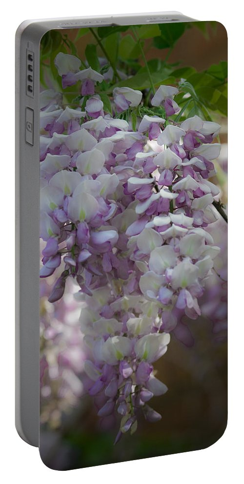 Wisteria Portable Battery Charger featuring the photograph Wisteria Magic by Teresa Mucha