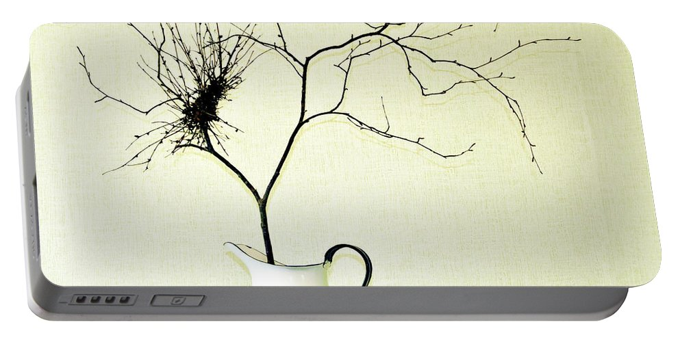 Witches' Broom Portable Battery Charger featuring the photograph Witches' Broom by Jarmo Honkanen