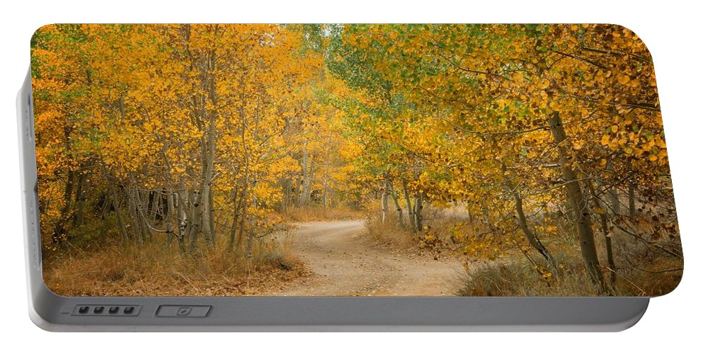 Fall Portable Battery Charger featuring the photograph Wonder Filled Path by Lynn Bauer