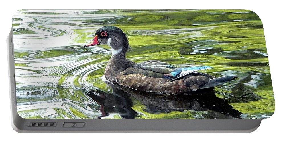 Wood Duck Portable Battery Charger featuring the photograph Wood Duck by Al Powell Photography USA