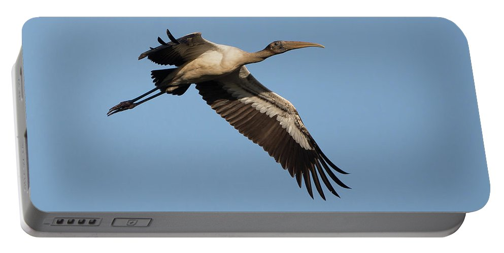 Florida Portable Battery Charger featuring the photograph Wood Stork 1 by David F Hunter