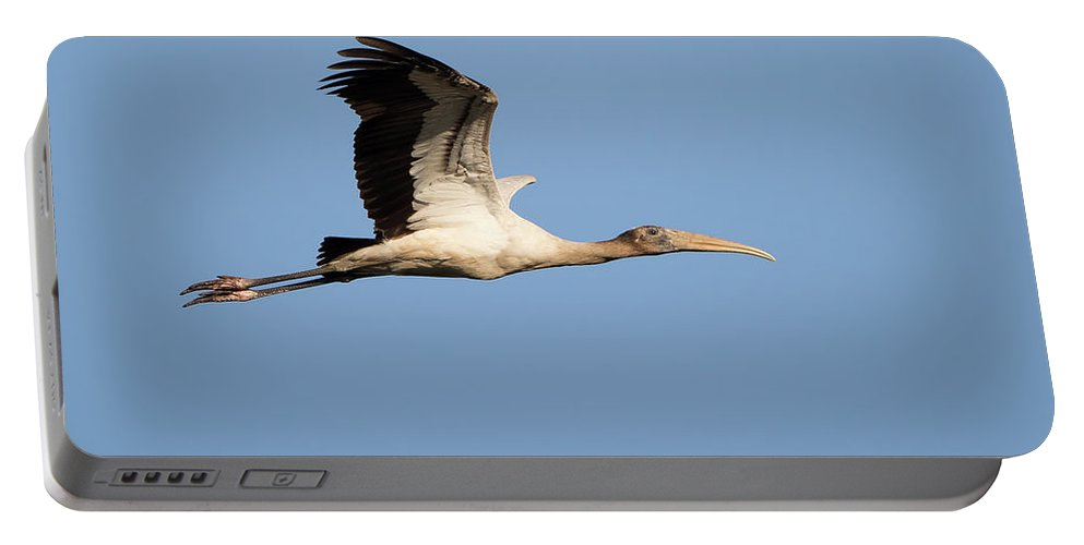Florida Portable Battery Charger featuring the photograph Wood Stork 2 by David F Hunter