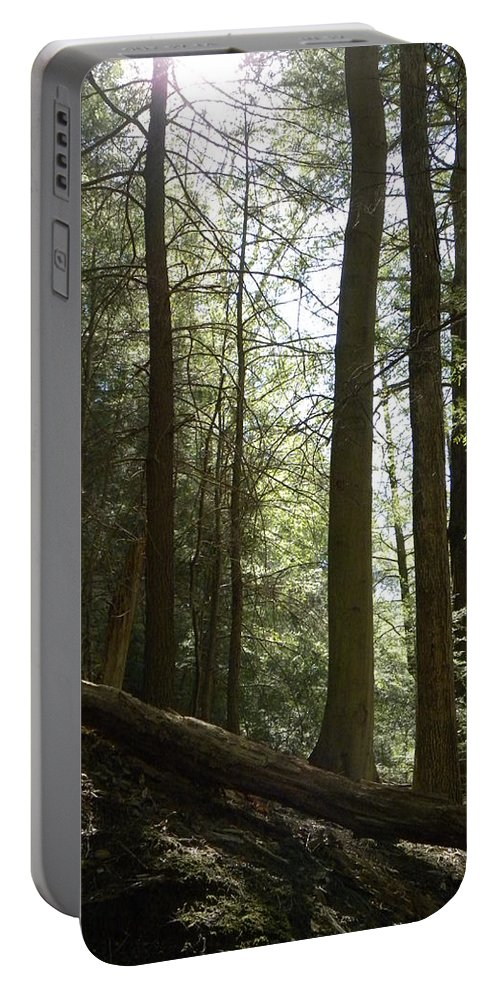 Woods Portable Battery Charger featuring the photograph Wooded Serenity by Kimberly Owens