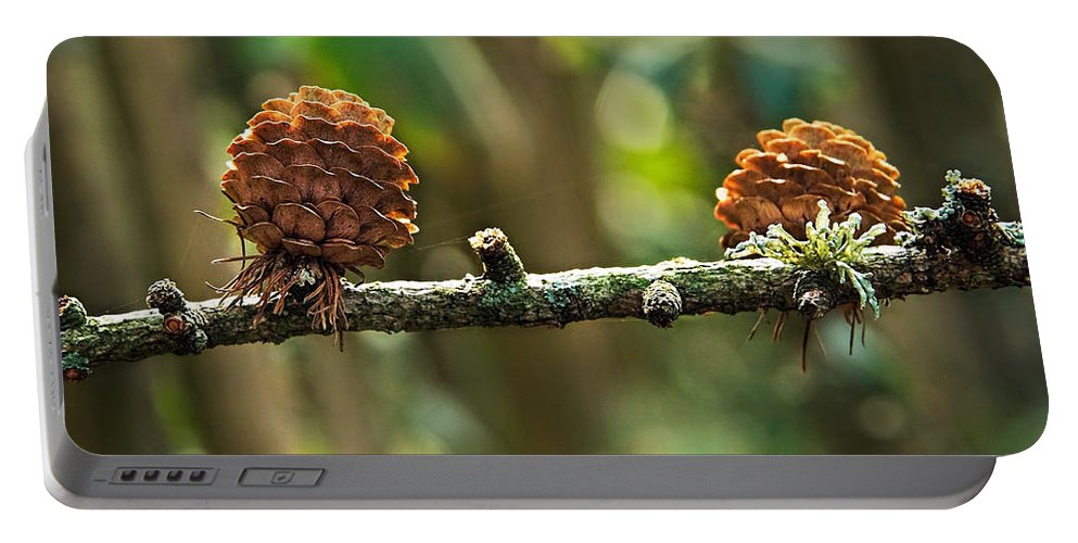 Pine Portable Battery Charger featuring the photograph Woodland Pine Cones by Susie Peek