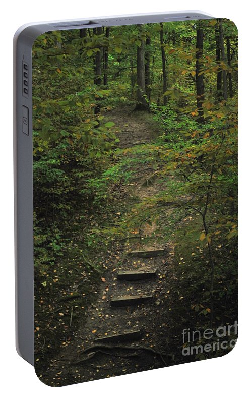 Wood Portable Battery Charger featuring the photograph Woodland Steps by Michelle Hastings