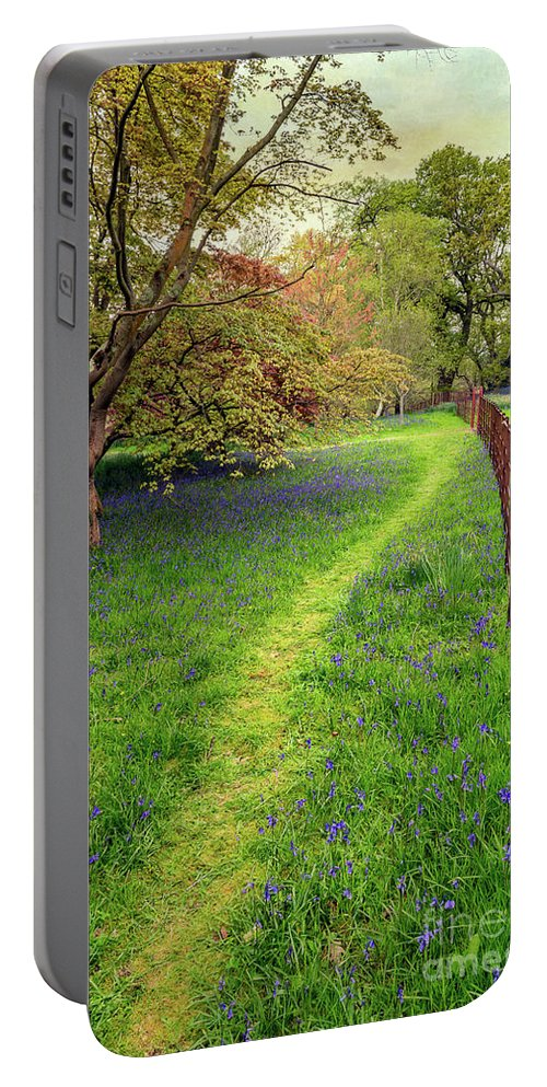 Bluebell Portable Battery Charger featuring the photograph Woodland Walk by Adrian Evans