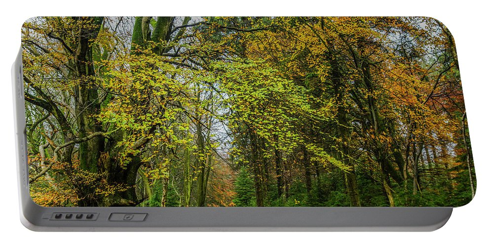 Autumn Portable Battery Charger featuring the photograph Woodland Walks #1 by Frank Etchells