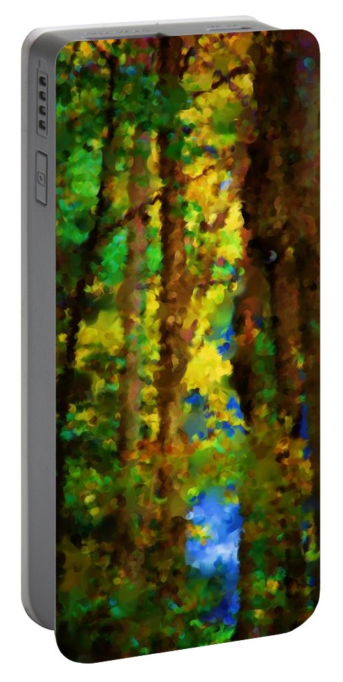 Digital Photograph Portable Battery Charger featuring the photograph Woods Approach To Lake by David Lane