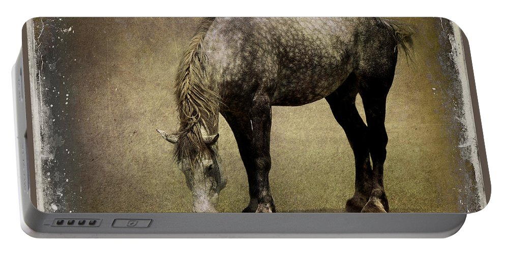 Horse Portable Battery Charger featuring the photograph Working Horse by Sari Sauls