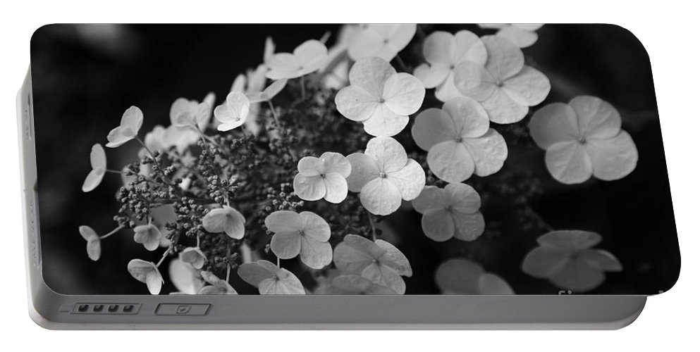 Hydrangea Portable Battery Charger featuring the photograph Working Together by Amanda Barcon