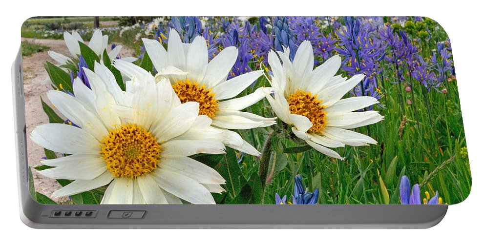 Wyethia Portable Battery Charger featuring the photograph Wyethia And Camas by Brad Christensen