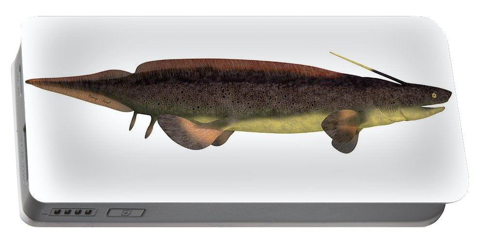 Xenacanthus Portable Battery Charger featuring the painting Xenacanthus Fish On White by Corey Ford