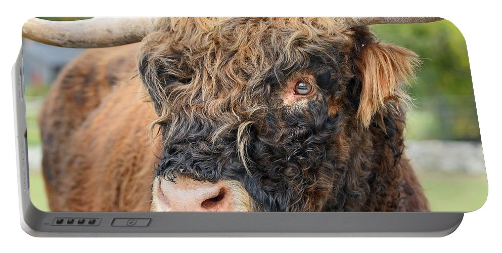 Yak Portable Battery Charger featuring the photograph Yakity Yak by Karol Livote