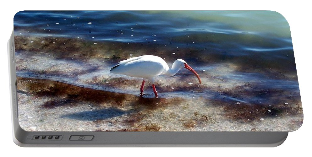 Bird Portable Battery Charger featuring the photograph Yay Seaweed by Elizabeth Klecker