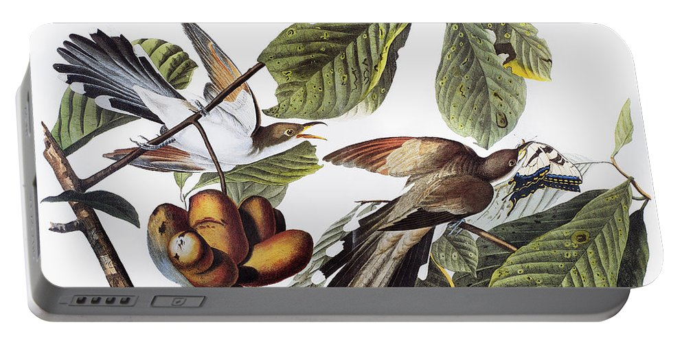 1827 Portable Battery Charger featuring the photograph Yellow-billed Cuckoo by Granger