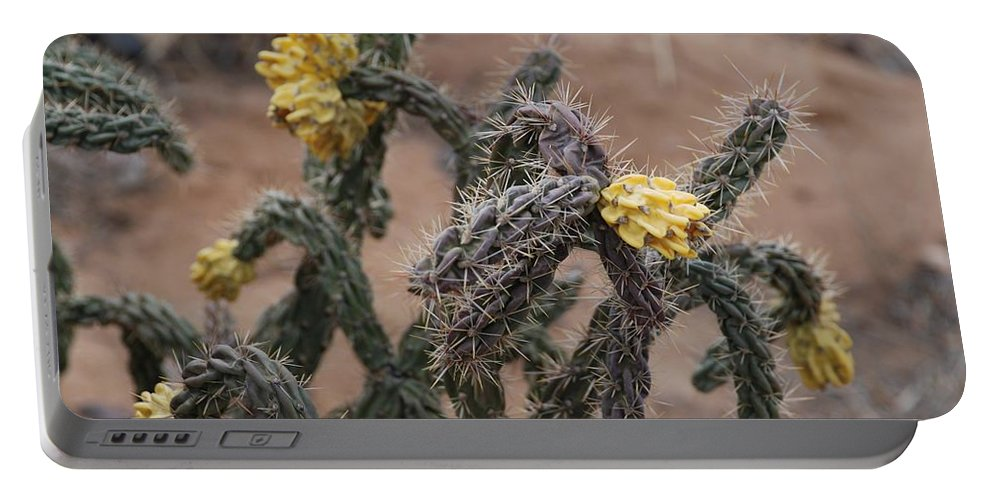 Cactus Portable Battery Charger featuring the photograph Yellow Cactus by Rob Hans