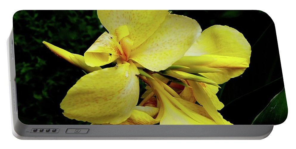 Flower Canna Lily Yellow Orange Red Gold Green Floating Orbit Spacial Abstract Mood Garden Nature Round Soft Graceful Dance Speckles Buds Bloom Contrast Petals Contemporary Minimalism Stirring Portable Battery Charger featuring the photograph Yellow Canna by Alida M Haslett