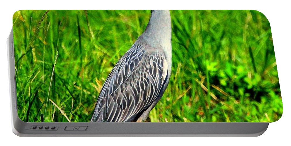Yellow-crested Night Heron Portable Battery Charger featuring the photograph Yellow Crested Night Heron Catches A Fiddler Crab by Barbara Bowen