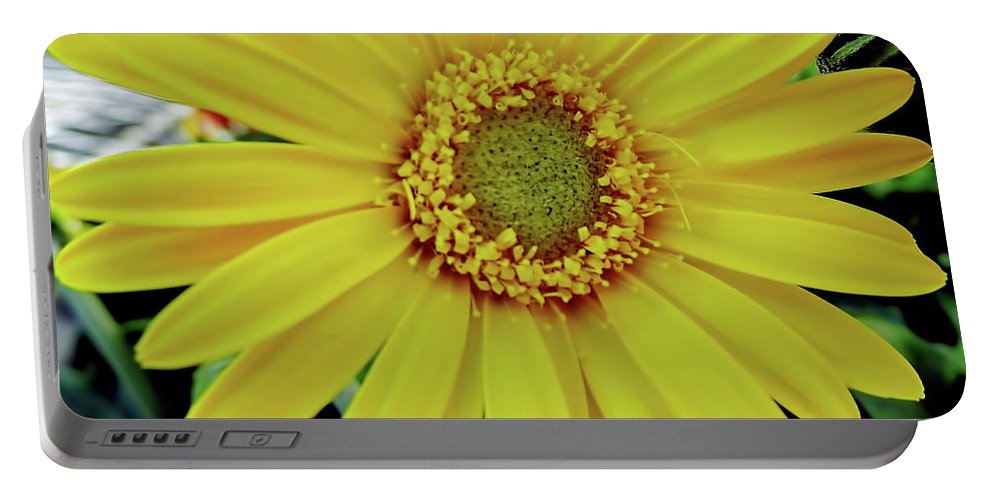 Daisy Portable Battery Charger featuring the photograph Yellow Daisy by D Hackett