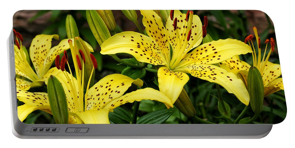 Flowers Portable Battery Charger featuring the photograph Yellow Lilies by William Selander