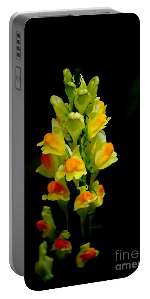 Digital Photograph Portable Battery Charger featuring the photograph Yellow Floral 7-24-09 by David Lane
