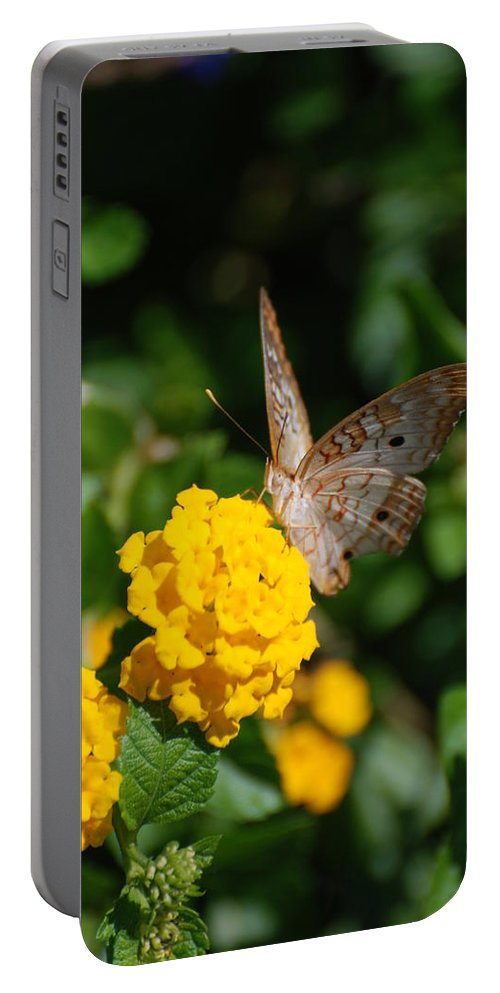 Butterfly Portable Battery Charger featuring the photograph Yellow Flower Brown Fly by Rob Hans