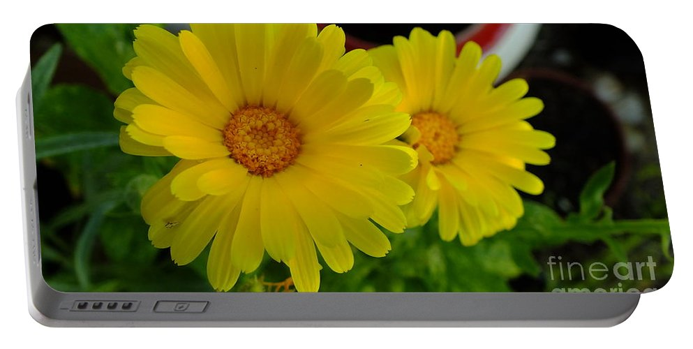 Yellow Portable Battery Charger featuring the photograph Yellow Flowers by Chandra Nyleen