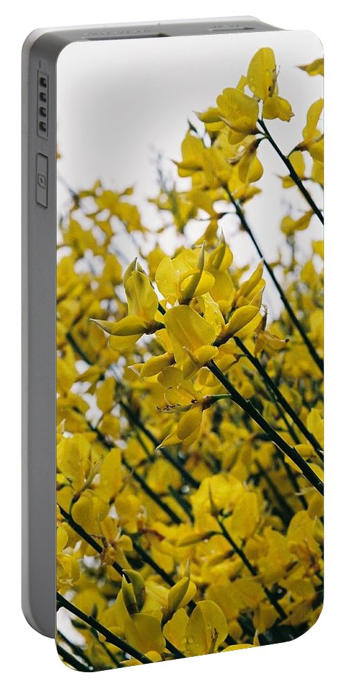 Yellow Portable Battery Charger featuring the photograph Yellow Flowers by Lauri Novak