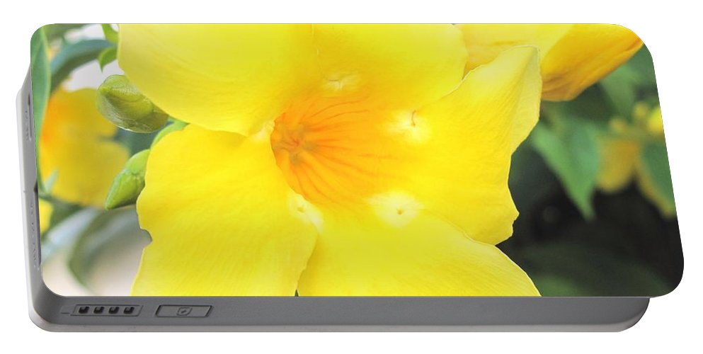 Yellow Portable Battery Charger featuring the photograph Yellow Hibiscus St Kitts by Ian MacDonald