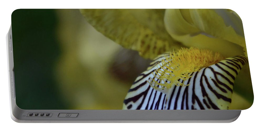 Iris Portable Battery Charger featuring the photograph Yellow Iris by Whispering Peaks Photography