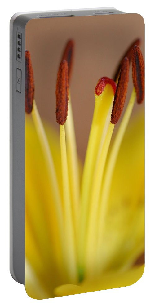 Flower Portable Battery Charger featuring the photograph Yellow Lily Reach 1 by Amy Fose