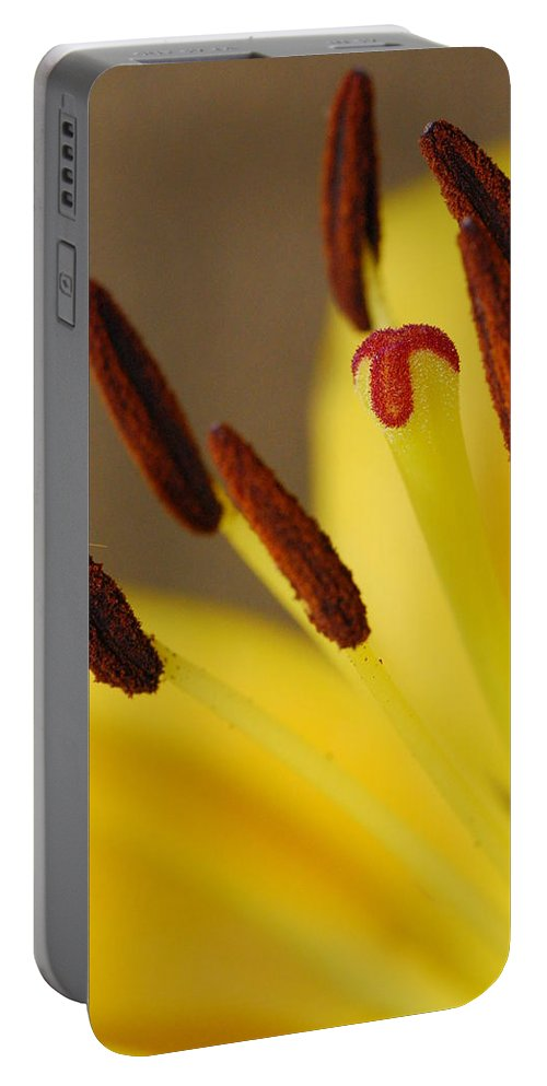 Flower Portable Battery Charger featuring the photograph Yellow Lily Reach 2 by Amy Fose