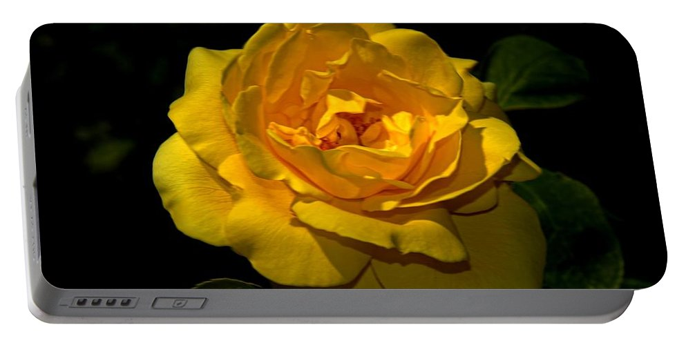 Yellow Portable Battery Charger featuring the photograph Yellow Rose by Bill Howard