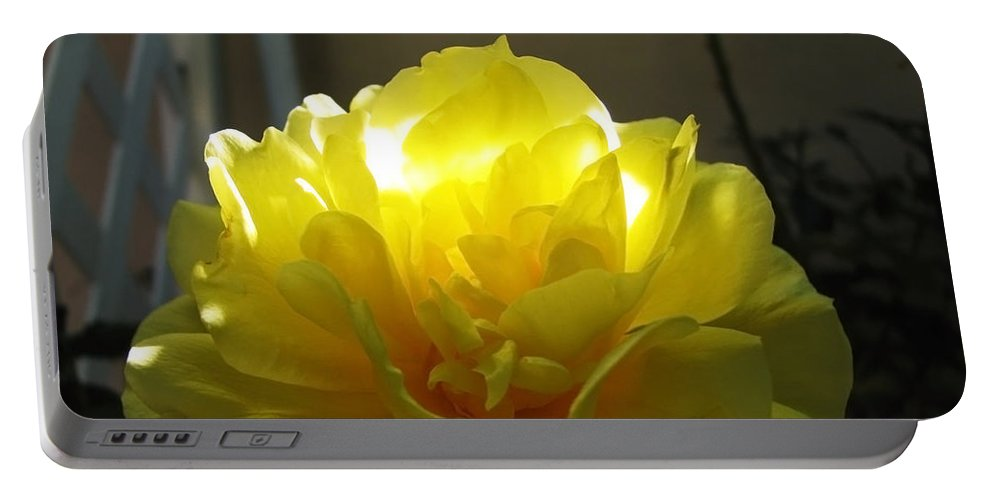 Arizona Portable Battery Charger featuring the photograph Yellow Rose by Robyn R Hazen