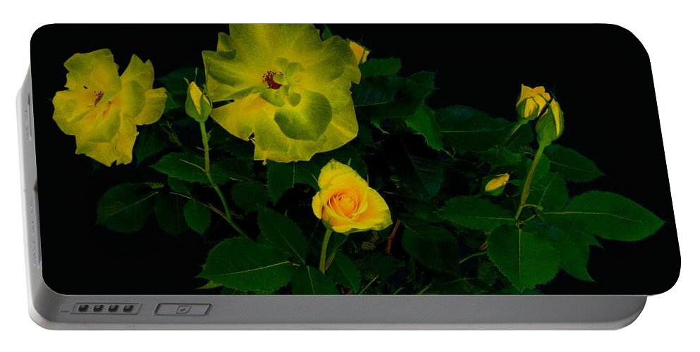 Rose Portable Battery Charger featuring the photograph Yellow Roses by Helmut Rottler