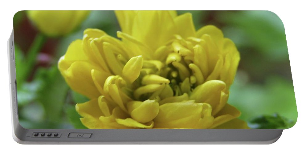 Yellow Flowers Portable Battery Charger featuring the photograph Yellow Shy by Kim Tran