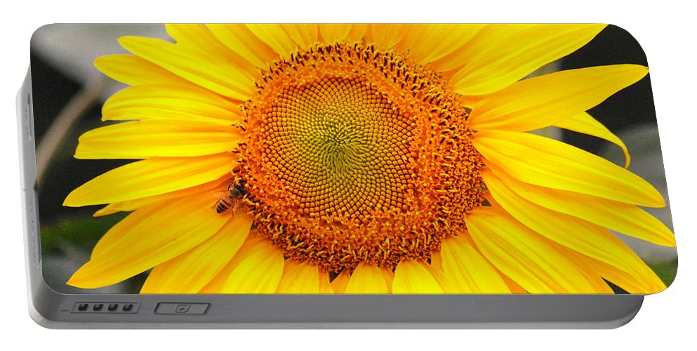 Sunflower Portable Battery Charger featuring the photograph Yellow Sunflower With Bee by Amy Fose