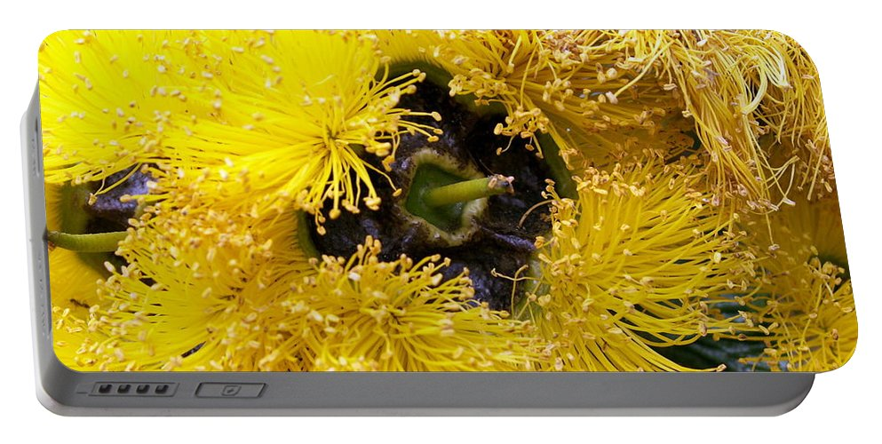 Flower Portable Battery Charger featuring the photograph Yellow Tree Flower by Amy Fose