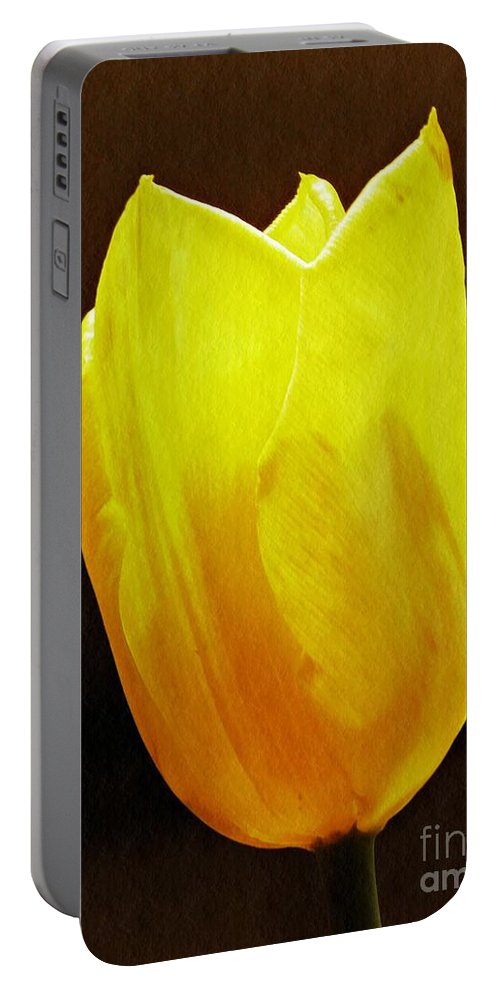 Tulip Portable Battery Charger featuring the photograph Yellow Tulip 3 by Sarah Loft
