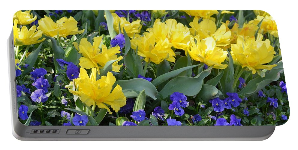Yellow Tulips And Violets Portable Battery Charger featuring the photograph Yellow Tulips And Violets by Maria Urso