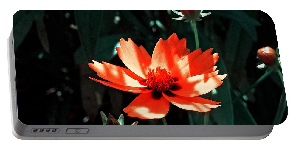 Garden Portable Battery Charger featuring the photograph You Are So Beautiful ... by Juergen Weiss