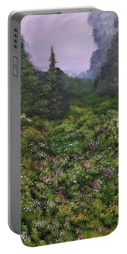 Landscape Portable Battery Charger featuring the painting You Can't Reach Me by Lisa Aerts