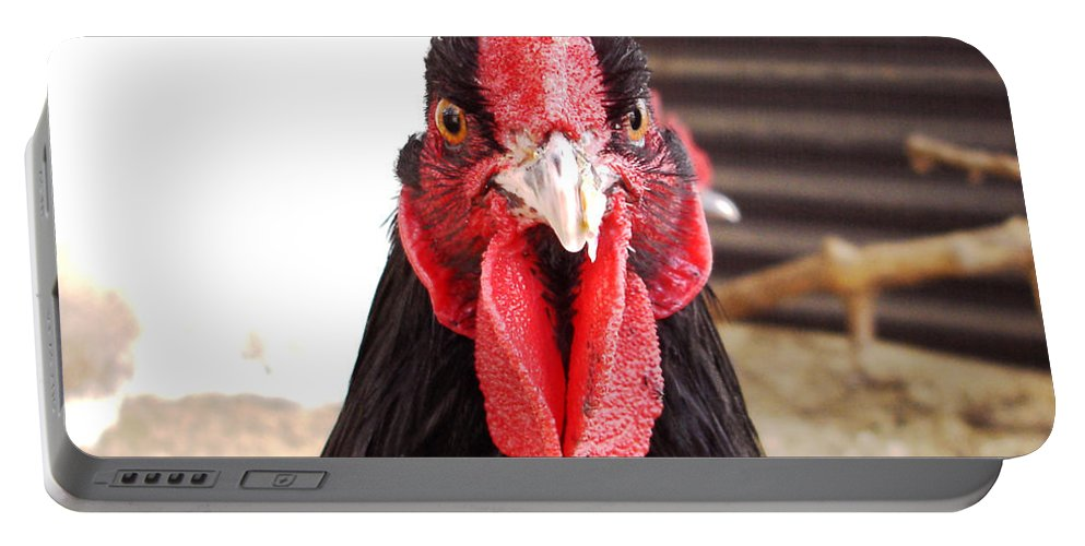 Rooster Portable Battery Charger featuring the photograph You Looking At Me by Susan Baker