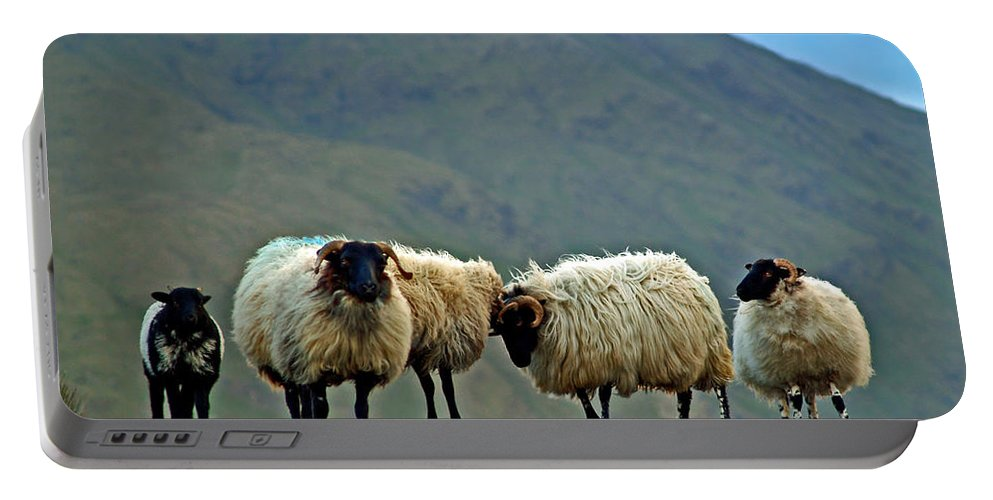 Fine Art Photography Portable Battery Charger featuring the photograph You're On Our Turf Now by Patricia Griffin Brett