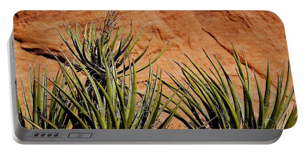 Yucca Plant Portable Battery Charger featuring the photograph Yucca Family by Kelley King