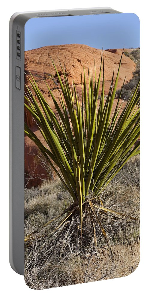 Yucca Plant Portable Battery Charger featuring the photograph Yucca Four by Kelley King