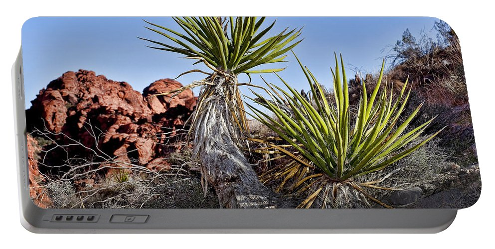 Yucca Plant Portable Battery Charger featuring the photograph Yucca Pair by Kelley King