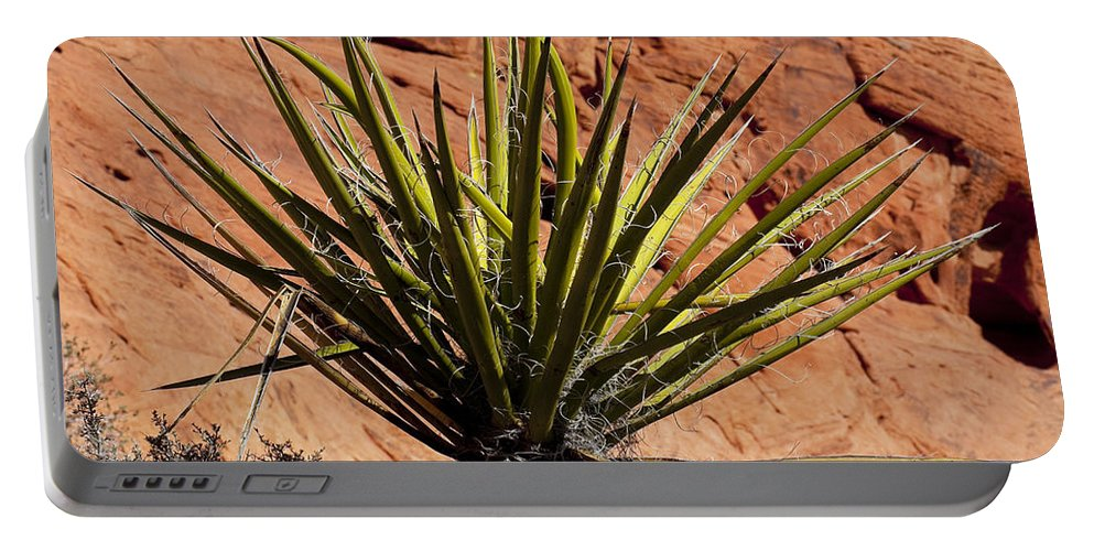 Yucca Plant Portable Battery Charger featuring the photograph Yucca Two by Kelley King